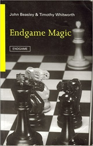 Endgame Magic — download book