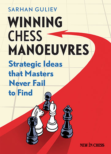 Winning Chess Manoeuvres: Strategic Ideas that Masters Never Fail to Find
