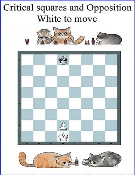 Critical Squares the most important Chess Pattern